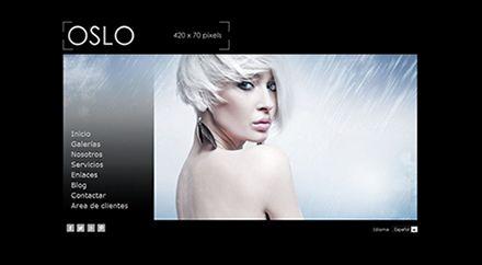 Web para Fotógrafo Oslo