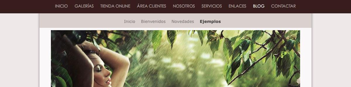 Arcadina - Blog profesional