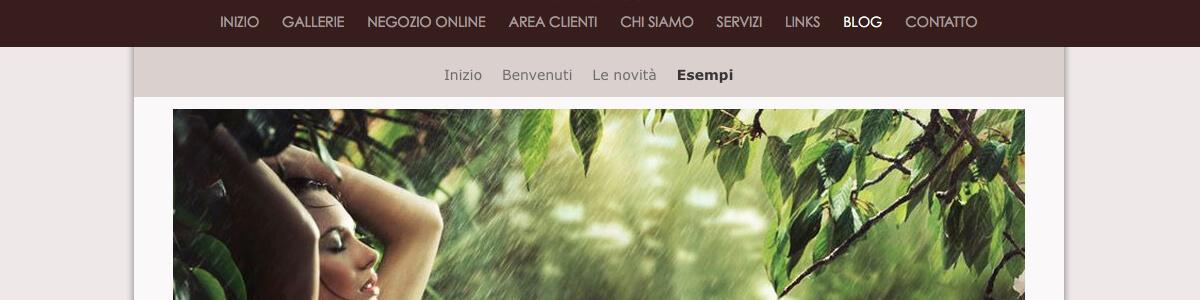 Sito web con blog per i fotografi
