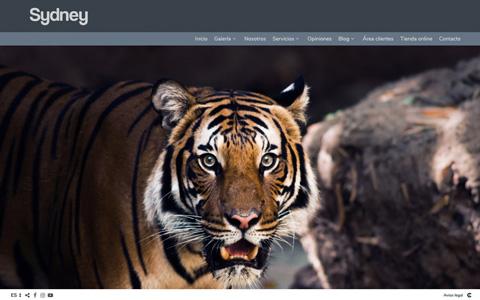 Sito web con blog per i fotografi - Theme sydney
