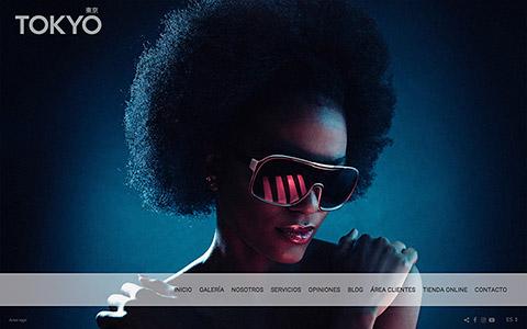 Sito web con blog per i fotografi - Theme tokyo